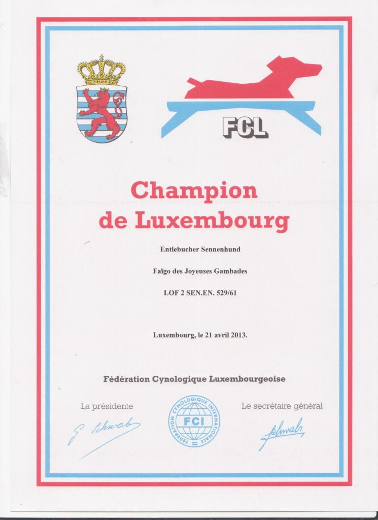 CHAMPION LUXEMBOURG 2013