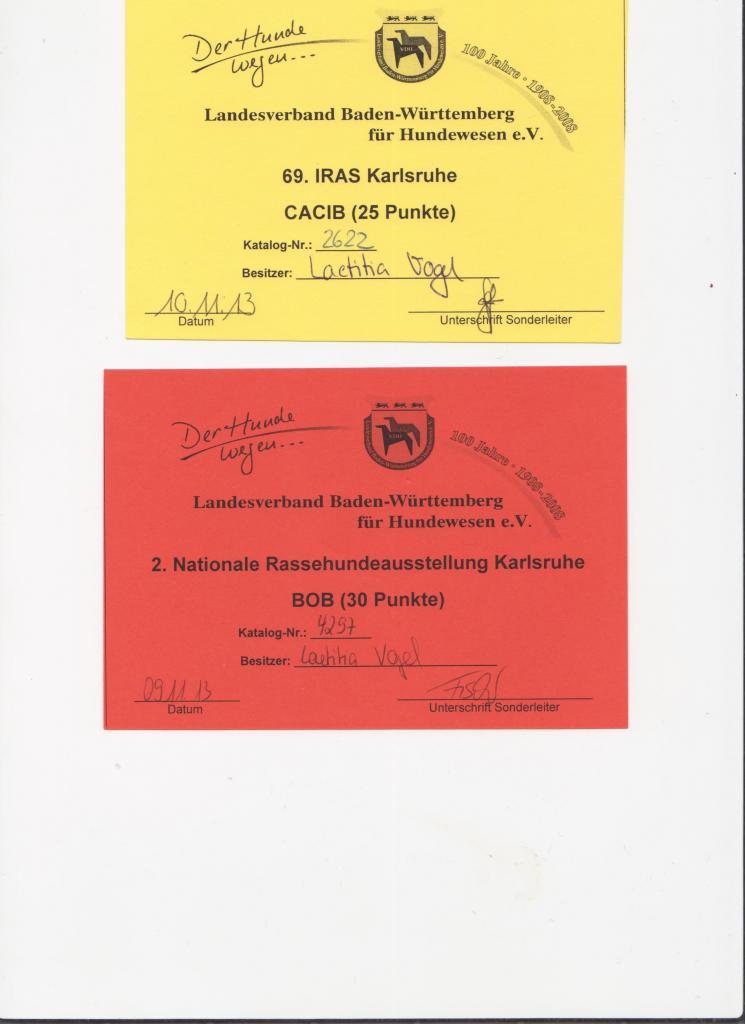 karls-cacib-bob-09.1113 10.11.13