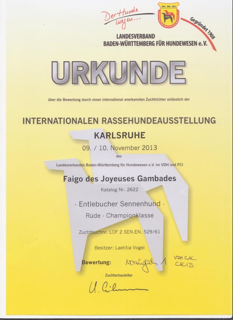 Karlsruhe Internationale SSV (Spéciale de race) classe Champion 1er EXCELLENT CAC VDH CAC SSV CACIB 10.11.13